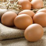 tojás házhozszállítás